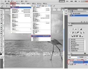 用PS把相片转换为素描图片-洛阳旅游发展资讯网